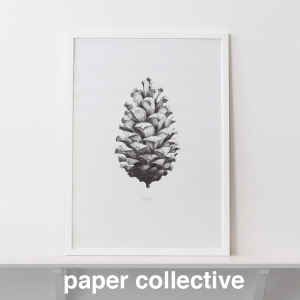 papercollectice